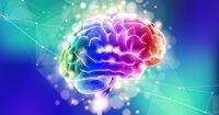 """""""脳の機能""""を活用せよ。大事な局面で絶対に好結果を出せる「感情コントロール法」"""