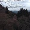 千本桜に史跡の宝庫。吉野町の旅