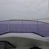 6/16 第26ラウンド 6:30~12:30  祝津沖 船釣り カレイ5匹 17度~20度