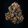 大麻解禁の時代に生まれたカンナビス料理、その「おいしさの科学」に迫る(Wired)