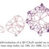 NEW KIND OF NETWORK( $NKN )のオートマトンを利用したネットワーク構造を数学で見ていく。