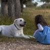 コロナ禍の子どもに犬を通じた心のぬくもり(クラウドファンディング)