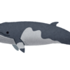 【社説比較】商業捕鯨、米中外交高官協議など
