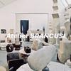 【Atelier BRANCUSI】独創的な彫刻家ブランクーシの復元されたアトリエ