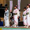若狭踊り屋 祭わ衆:11日、おばまYOSAKOI@福井県小浜市