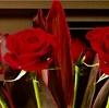 バレンタイン 男からお花を贈ろう