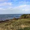イギリスゴルフ #16|スコットランド遠征|Turnberry - Kintyre Course|ターンベリーのもうひとつの顔,キンタヤコース