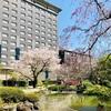 『しながわ花海道』~『御殿山庭園』~『高輪の日本庭園』散り際が美しい桜スポットをハシゴ!