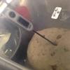 パン工房 天然酵母パンの仕込み モミジ
