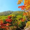 日光の紅葉シーズンは渋滞に注意!ツアーならストレスなく回れる!