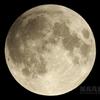 望月(月齢14.635)