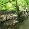 宮島を散歩10(広島県廿日市市)