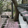 Instaweather:2018-04-06〜04-10