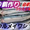 """""""【釣り餌研究】ウルメイワシを使った切り身えさ作り方 (カサゴ、根魚、太刀魚、アナゴ、などのつりえさ)鰯のさばき方"""" を YouTube で見る"""