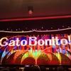 雪組「Gato Bonito!!〜ガート・ボニート、美しい猫のような男」