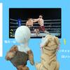 RIZIN 10 リアルタイムTV観戦記inスカパー
