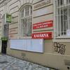 いいね:プラハ初猫カフェ  [UA-101945528-1]