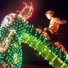「ピートと秘密の友達」の感想・評判は?フワフワのぬいぐるみ系ドラゴンに癒されるファミリー映画!