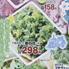 画像 画像処理 アップ ぼかし 菜の花 しずてつストア 2月25日