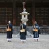 興福寺 夏の朝/酷暑の夏とはいえ、朝まだき、微かな風が清々しい。若々しい僧侶の般若心経が聞こえてきました。