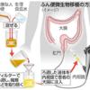 018【便移植から腸内細菌を考える】