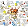 mind mapを使って、より効果的な学習を