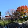 【京都観光】清水寺近辺の秋の景色