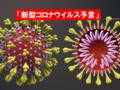 【予言】「新型コロナウイルス予言」が的中したヒプノセラピストマリアさん~3月に日本で大地震?サーバーシステム予言