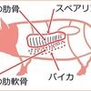 豚肉の軟骨パイカの部位とは超希少!スペアリブとの違いも分かる!