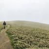 サボった人の登山での体力トレーニングと、下りの姿勢矯正