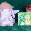 【爽 抹茶フロマージュ】ロッテ 2月3日(月)新発売、コンビニ アイス 食べてみた!【感想】