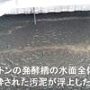 僕は、飯山一郎先生と酵素浴えんの社長を尊敬しこの人たちに学びたいと思うのです!