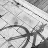 自転車活動、始動!