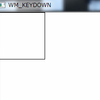 WM_KEYDOWN