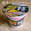 韓国の天ぷらうどんを食べた感想【農心】
