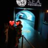 セントーサ島の水族館(シンガポール)