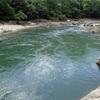 ビワコオオナマズを釣るために|ポイントからルアー、ロッド、タックルを考慮する