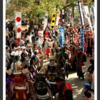 196.妙円寺詣り