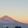 登山履歴書(金時山から丸岳2021.01.19)