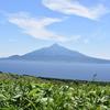 北海道礼文島地域おこし:地域住民に「地域おこし」に関するアンケート調査を実施しました!