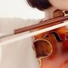 スピッカート1 東京・中野・練馬・江古田ヴァイオリン・ヴィオラ・音楽教室