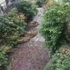 伸線の水車と薬種の水車―生駒山西麓の事例―