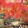晩秋の京都・奈良 ④京都御所