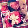 「ありがとう」の花束