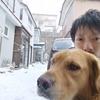 【2019年12月上旬】複業マンのリアルな日常(ただの日記)Vol8