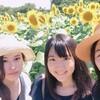 夏におすすめ!成田ゆめ牧場