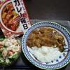 休日のひとり飯シリーズ 台風19号の買い置きのカレー曜日