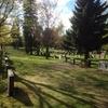 フィンランドの墓地が美しすぎて、死後の世界に希望しか湧いてこない【写真37枚】