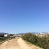 10月21日(日)30km走。