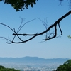 眉山登山。天神社・ラジオ体操の人の裏道から歩いて登った(徳島市)